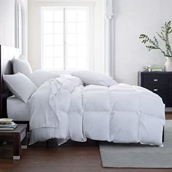 Lavish Comforts Hotel Luxury